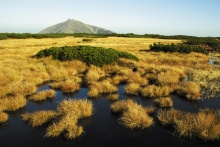 Úpské rašeliniště se rozkládá na ploše téměř 73 hektarů, foto: Archiv Vydavatelství MCU s.r.o.
